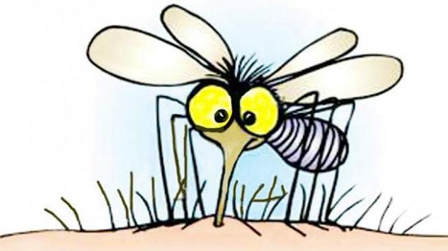 Napravite sami efikasan sprej protiv komaraca