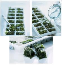 Zamrznite svježe bilje?