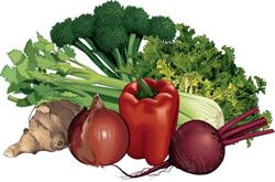 Da biste sačuvali povrće bar neko vrijeme...