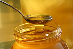 Svjež med