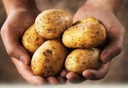 Da ulje u kojem ste pržili krompir ne bi potamnilo...