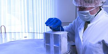 Čuvanje matičnih ćelija od sada dostupno i u Crnoj Gori