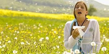 Prevencija i liječenje polenske alergije