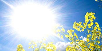 Prepoznajte simptome toplotnog udara