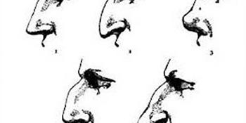 Šta oblik nosa govori o muškarcu?