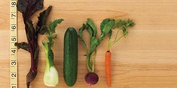Mikro zelenilo - zdravlje u malom
