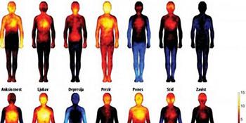 Ovako se emocije manifestuju na tijelu