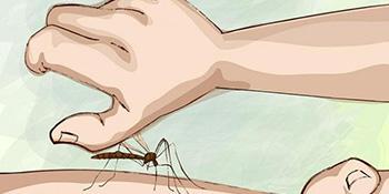11 načina da ublažite nesnosan svrab poslije ujeda komarca!