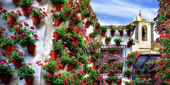 Cvijeće u žardinjerama i viseći vrtovi učiniće vaš balkon jedinstvenim!