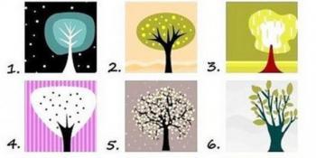 Stablo koje vam se najviše dopada otkriva koje su vaše najbolje osobine
