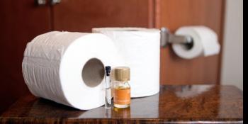 Napravite prirodni osvježivač vazduha za toalet