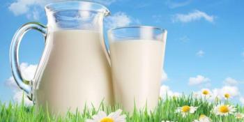PAZITE ŠTO JEDETE: 5 namirnica koje stručnjaci za kontrolu hrane NIKADA ne bi okusili