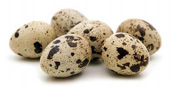 Kako pravilno konzumirati prepeličja jaja