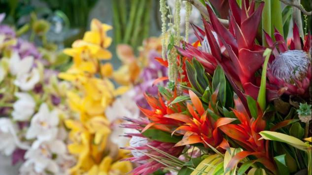 Cvijeće na dar - Skriveno značenje i simbolika