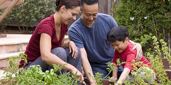 Porodični vrt – ideje za uređenje