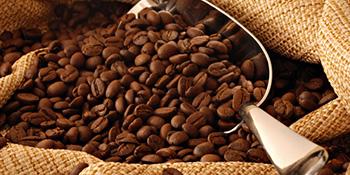 Talog od kafe - za šta sve možete da ga koristite