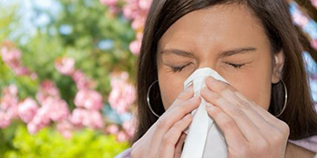 Prirodni ljekovi za alergiju