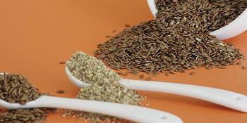Zdravstvene blagodeti lanenog sjemena