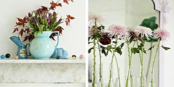 6 profesionalnih trikova da rezano cvijeće duže traje