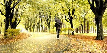 U susret jeseni